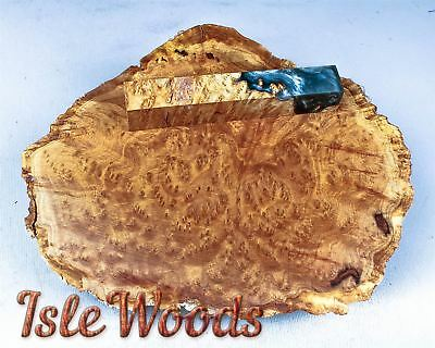Brown Mallee Burl Cap Live Edge Turning, Casting Wood   BML1183