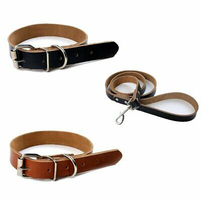 Strong Pet Collar Cow Leather Dog Puppy Adjustable 2 Colour Neck Latest TU