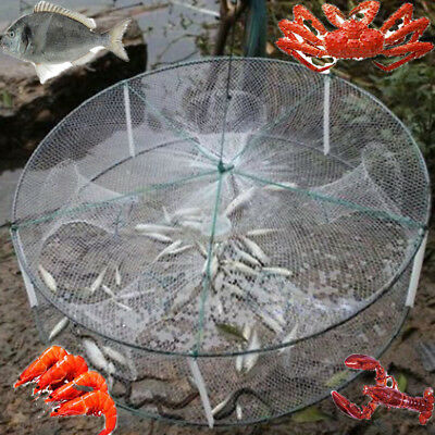 FISH FISHING TRAP Shrimp Crab Pot Net Survival Prawn Cage