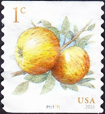 US - 2016 - 1 Cent Pippin Apples Fruits Series Coil # 5037 Plate #P111111 Single