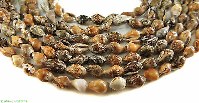 Shell Beads Africa 29 Inch