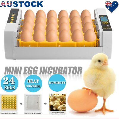 24 Egg Incubator Digital Fully Automatic Turning Chicken Poultry Eggs HatchN4