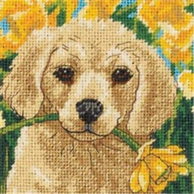 Dimensions 406292 Puppy Mischief Mini Needlepoint Kit-5 in. x 5 in. Stitched ...