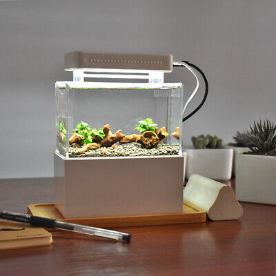 Mini Complete Tank Fish Aquarium + Sump + LED + Heater + Thermometer + Tray