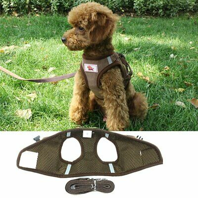 Soft Mesh Pet Jacket Vest Small Dog Harness Step-in Puppy Harness Leash Set DS