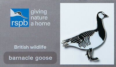 RSPB Pin Badge | barnacle goose standing GNAH (00033)