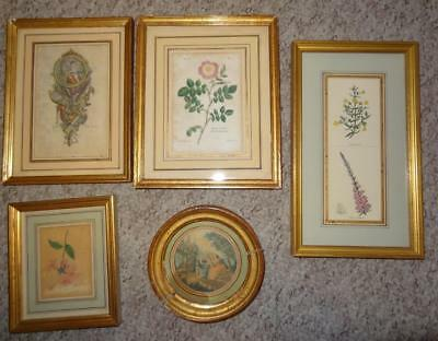 Collection of Small Antique French Engravings - Well Framed & Mounted