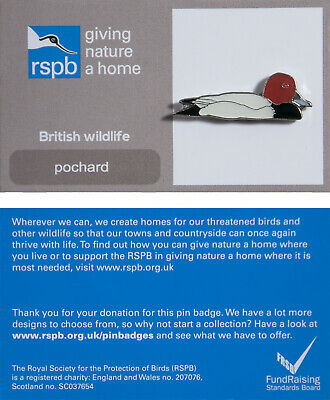 RSPB Pin Badge | pochard GNAH (01180)