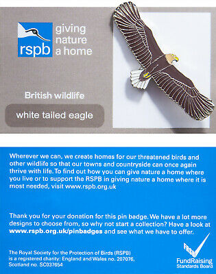 RSPB Pin Badge | white tailed eagle GNAH (01227)