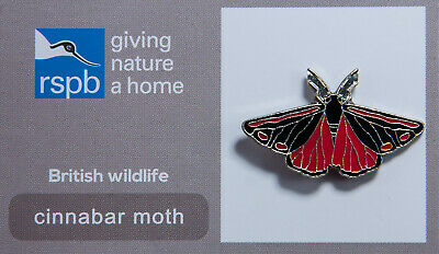 RSPB Pin Badge | cinnabar moth GNAH (00124)