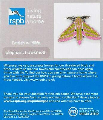 RSPB Pin Badge | elephant hawkmoth GNAH (01347)