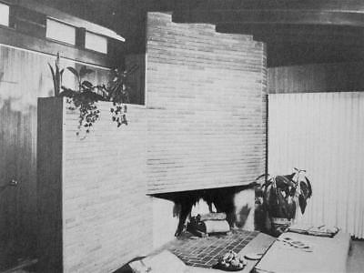 Mid Century Modern Plan & Build Your FIREPLACE Architecture Design Neutra May