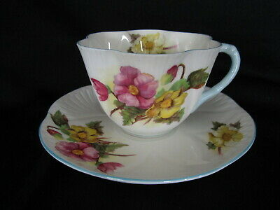 Shelley - BEGONIA - Teacup and Saucer - Dainty Shape