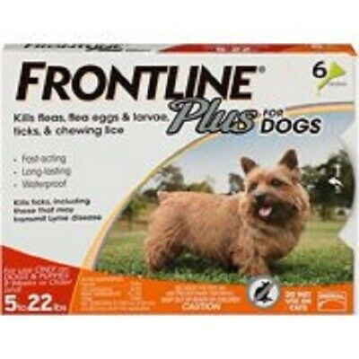 FRONTLINE Plus for Small Dogs (5-22 pounds) Flea and Tick Treatment, 6 Doses