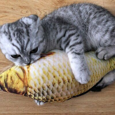 Fish Shape Pet Kitten Cat Mint Catnip Chewing Interactive Funny Scratch Toy DS