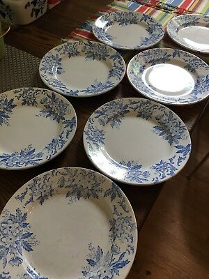 "Vintage Amandinoise France ""Anemone"" Blue on White Dinner Plates - Lot of 4"