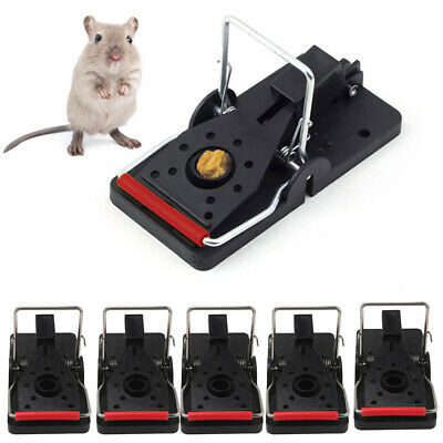 Hot 6Pcs Reusable Mouse Rats Trap Killer Control Trap-Easy Pest Catching Catcher