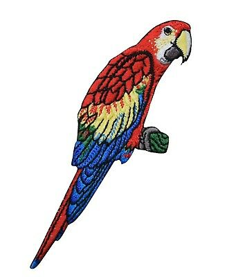 Embroidered Patch - Iron on Applique - Scarlet Macaw Parrot - Tropical Bird