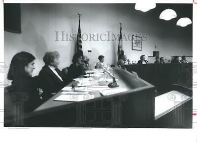 1994 Press Photo Troy City Council members during a session, New York