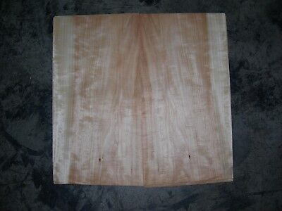 Maple Wood Veneer. 10 x 19.5, 16 Sheets.