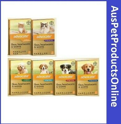 Advocate For Dogs & Cats - Fleas, Heartworm & Worms - 6 Pack