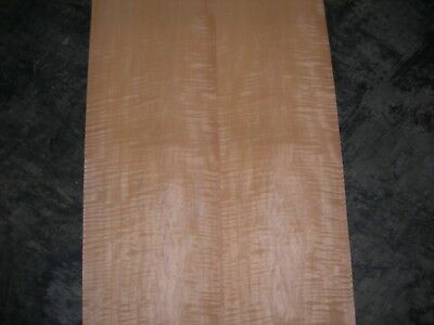 Fiddleback Tiger Maple Wood Veneer. 9 x 97, 5 Sheets.