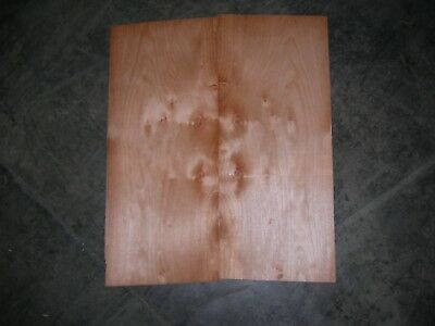 Maple Cluster Wood Veneer. 8 x 20, 12 Sheets.