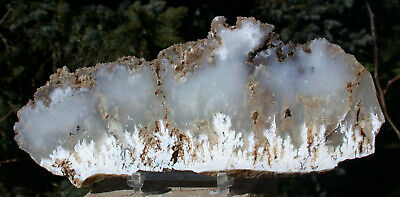 SiS: WINTER SCENE - Stinking Water Plume Agate Specimen Slab from OR