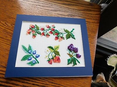 Fruit Sampler Hand Embroidered Panel COMPLETED Handmade Strawberry Raspberry