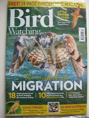 BIRD WATCHING APRIL 2019 magazine + GARDEN BIRD magazine NEW (still in wrapper)