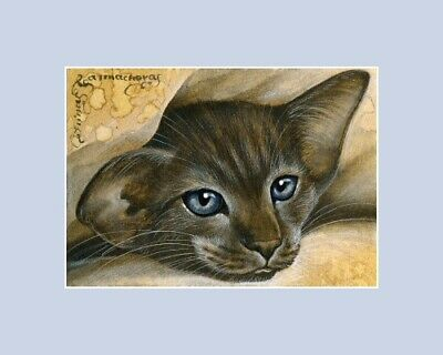 Oriental Cat ACEO ATC Watching You an original by Irina Garmashova