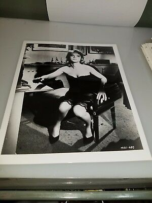 Vintage 8 X 10 Photograph From Irving Klaws Archives Of Anne Francis Lot #2