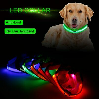 USB Rechargeable LED Glowing Flashing Night Light Pet Cat Dog Safety Collar