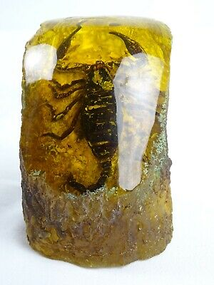 Chinese Mastic Amber Look encased Scorpian paperweight China late 20thC