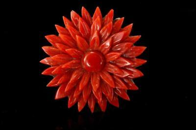 Antique Victorian Carved Red Coral Flower Pin Brooch D101-03