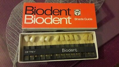 vintage biodent shade guide teeth