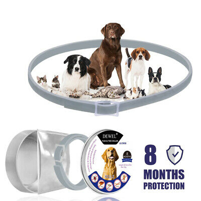 New Dewel US DOGS Anti Flea and Tick Collar for Large Dogs 8 Month Protection