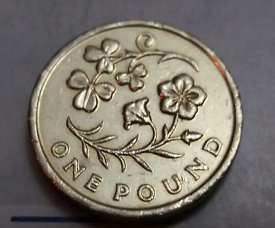 2014 £1 One Pound Coin Circulated Floral Emblem N/Ireland Shamrock & Flax (EF)J4