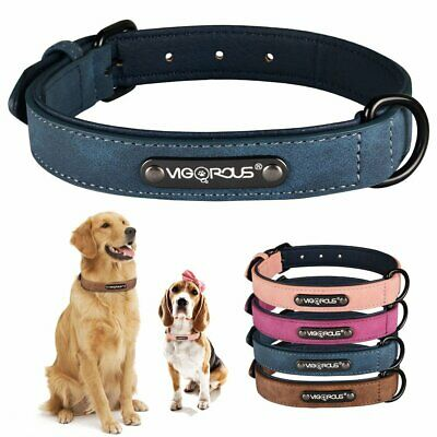 Soft Velet Dog Collar Leather Padded Pet Collar for Small Medium Large Dogs
