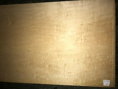Curly Maple Wood Veneer. 15.5 x 71, 3 Sheets.