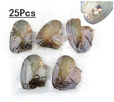 HOT 25pcs Individually Wrapped Oysters Large with Pearl Birthday Mother Gifts