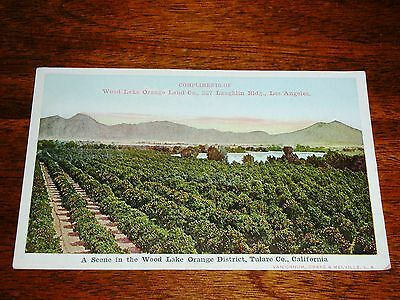 Early 1800s Original Wood Lake Orange District Land Co. Los Angeles CA Ad Card