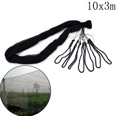 10*3m Anti Bird Crop Net Netting Garden Plant Pond Fruit Tree.Mesh Protection AS