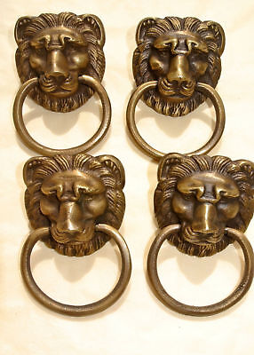 4 LION pulls handles Small heavy  SOLID BRASS old style bolt house antiques