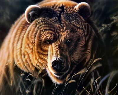 Home Decor Brown Bear Oil painting Picture Art Giclee Printed on canvas P107