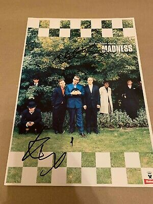 Madness   -  Signed 1999 Tour Programme  -  Suggs + Thommo  Genuine   -  Uacc