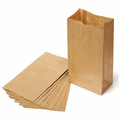 10pcs Brown Kraft Strung Paper Bags Sandwich Fruit Lunch Grocery Food Paper Bag