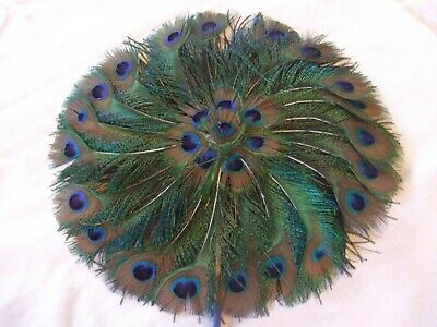 Real Natural Peacock Feather Fans Burlesque/Home Decor/Theatrical Costume Props