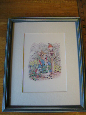 "Peter Rabbit eating radishes framed picture blue wood frame 9"" x 11"""