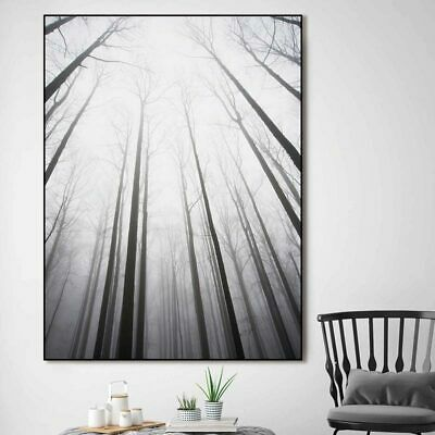 Nordic poster Canvas Painting home decor art Prints Tall Trees Forest Unframed